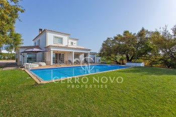 Wonderful five bedroom villa with vineyard